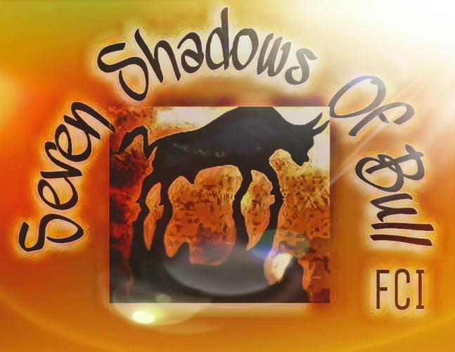 Seven Shadows Of Bull